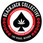 Black Jack Collective